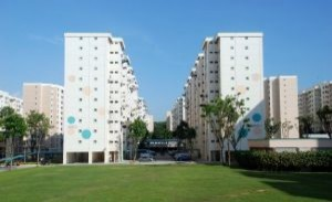 budynek-mieszkalny_21104476